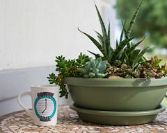 Coffee Time (mdejesus73) Tags: mug coffee coffeemug cafe coffeetime plants nikond600 50mm18g