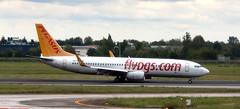 TC-AZP Boeing 737-800 Pegasus (Asia) BLQ 150519 (kitmasterbloke) Tags: blq bologna marconi italy aviation airliner aircraft outdoor transport