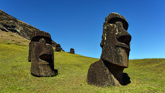Moai on the slopes of Rano Raraku volcano, Easter Island (David D Moore) Tags: easterisland rapanui isladepascua moai ahutongariki ranoraraku anakena ahuakivi theseven birdmancult birdman birdmen orongo ahutahai koteriku tahai vaiure ranokau polynesia chile