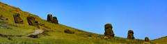 Easter Island (Rapa Nui: Rapa Nui, Spanish: Isla de Pascua) (David D Moore) Tags: easterisland rapanui isladepascua moai ahutongariki ranoraraku anakena ahuakivi theseven birdmancult birdman birdmen orongo ahutahai koteriku tahai vaiure ranokau polynesia chile