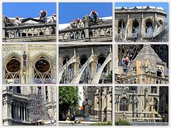 Notre-Dame 15 05 2019 (Raymonde Contensous) Tags: paris notredamedeparis cathédrale architecture incendienotredame travaux