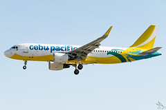 Cebu Pacific Air - Airbus A320-214 / RP-C3273 @ Manila (Miguel Cenon) Tags: cebupacific cebupac cebpac ceba320 rpll planespotting ppsg philippines plane 5j airplanespotting airplane apegroup appgroup airport airbus airbusa320 a320 manila nikon naia d3300 narrowbody wings wing window flying fly winglet twinengine aircraft aviation sky tree cockpit building rpc3273