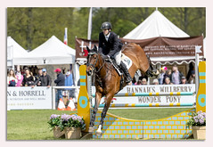 Chatsworth Internation Horse Trials 2019 (johnhjic) Tags: johnhjic horse house chatsworth chatsworthhouse trails jump fence flower flowers grass man rider riding flags