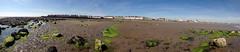 Barassie to Troon Panoramic (44) (dddoc1965) Tags: dddoc davidcameronpaisleyphotographer barassie troon westofscotland northayrshire coastline seafront sand stones rocks beach sunny iphone4 panoramicphotos may14th2019 yachts dddocdavidcameronpaisleyphotographerbarassietroonwestofscotlandnorthayrshireboatsseacoastlinepanoramicphotosholidaywalksmay14th2019
