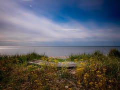 Bench (foTobias.) Tags: canon eos 6dm2 ef 2470 f28l bw 10 stop nd seascape bench