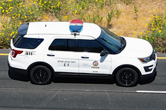 LAPD K-9 Bomb Detection (Martijn Groen) Tags: losangeles elsegundo california unitedstates usa april 2019 police lawenforcement lapd emergency policecar policevehicle policesuv vehicle suv ford fordexplorer explorer fordpoliceinterceptor policeinterceptor utility k9 bombdetection