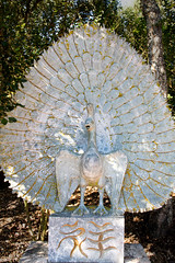 Peacock _8239 (hkoons) Tags: bacalhôabuddhaedengarden iberianpeninsula bamiyan bombarral buddha buddhas city europe people portugal tree arbor art artist artistic bloom blossom branch branches brass bronze bud buds canopy color enjoyment fern flora flower garden green growth landscape leaf leaves limb limbs natural naturalist nature outdoors panorama quiet roots sculpture soil statue stem stone sun sunlight sunshine tranquility trees trunk