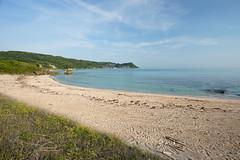 20190515A73_8096 (Gansan00) Tags: ilce7m3 α7ⅲ sony zeiss japan 山口県 yamaguchi 日本 landscape snaps ブラリ旅 5月 oohama 大浜海水浴場 fe1635mmf4 sea morning