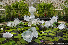 -20190516 Kew1-2-Edit (Laurie2123) Tags: fujixt2 kewgardens laurieturnerphotography laurietakespics odc ourdailychallenge laurie2123 chihuly is peo