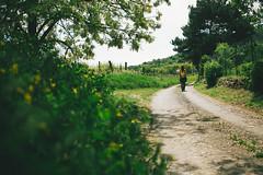KRIS9631 (Chris.Heart) Tags: kéktúra túra hiking hungary nature balaton természet