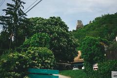 KRIS9766 (Chris.Heart) Tags: kéktúra túra hiking hungary nature balaton természet