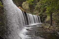 Tiempo de exposición rápido (lebeauserge.es) Tags: rascafría madrid españa naturaleza árbol río agua catarata cascada