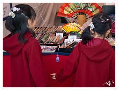 2ème jour / 2nd day - Eventails et jumelles / Fans and twins   - Château Nijo / Nijo castle - Kyoto (christian_lemale) Tags: kyoto japon japan château castle nijo nijojo 京都 二条城 日本 nikon d7100