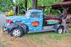 It's a Burl (creepingvinesimages) Tags: htt vintage classic truck wrecker art painted advertising blue red outdoors kirby oregon redwoodshighwayus199 nikon d7000 pse14 topaz