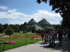 Palmenhaus (✿ Esfira ✿) Tags: tiergartenschönbrunn viennazoo palmenhaus schlosspark palacepark blumen flowers wien vienna österreich austria
