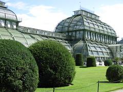 Palmenhaus (✿ Esfira ✿) Tags: tiergartenschönbrunn viennazoo palmenhaus schlosspark palacepark wien vienna österreich austria