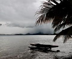 Saison des pluies (Faapuroa) Tags: polynesia polynésie tahiti pacific pacifique pluie rain pirogue canoe ocean nikon p1000 coolpix