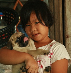 girl with pug (the foreign photographer - ฝรั่งถ่) Tags: girl child pug dog khlong thanon portraits bangkhen bangkok thailand canon