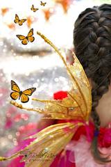 Flight (glasskunstler) Tags: wings fairies gnomes festival girl child bokeh butterflies fantasy makebelieve dreams pretend flight monarch sequins glitter