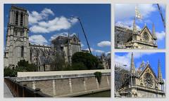 Une opération délicate (Raymonde Contensous) Tags: notredamedeparis cathédrale travaux grutage