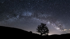 Vía Láctea (Milky Way) (borjamuro) Tags: vía láctea milky way cielo sky noche star stars night estrella estrellas árbol tree arco arc nightscape paisaje nocturno prades tarragona españa espana spain nikon d7100 tokina long exposure larga exposición