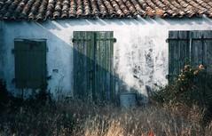 Faded glory 1 (rob kraay) Tags: oldfacade door robkraay shutter roof plasteredwall garden flowers dustbin abandoned cottage rooftiles shadow pastglory woodendoor