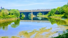 Reflections on the River Ribble. (peterileypics) Tags: river bridge ribble preston park lancashire sun sunshine reflection lightroom light sky