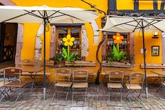 Riquewihr / Alsace 2019 (karlheinz klingbeil) Tags: riquewihr altstadt window restaurant city tür door oldtown frankreich vielleville decoration cafe france fenster alsace dekoration stadt