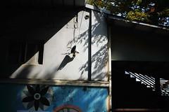 1302/1757 (june1777) Tags: snap street seoul light shadow canon eos 5d leitz leica summicron r 50mm f2 100 clear