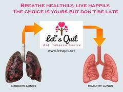 59446288_490982601439933_4604129379952361472_n (letsquit.net) Tags: nosmoking quitsmoking anti smoking leavesmokingtips