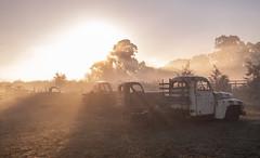 IMG_4335 (alextaz2) Tags: swan valley perth australia caversham farm vintage car sunrise landscape