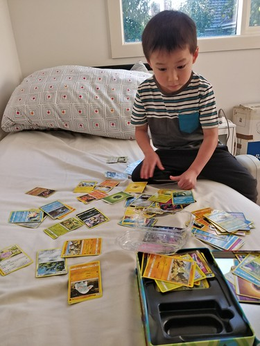 Liam trying to decide which Pokemon cards to bring to kinder