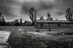 Auschwitz & Hope ... (vladimir78F) Tags: exterminationcamp girl auschwitz hope concentrationcamps desatured
