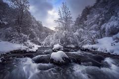 Javy Nájera Fotografía (Javy Nájera) Tags: españa larioja lugardelrío blanco fríonaturaleza invierno nieve paisaje