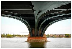Under the bridge (frodul) Tags: architektur ausenansicht brücke gestaltung konstruktion kurve linie outdoor mainz fluss wasser rhein theodorheussbrücke rheinlandpfalz deutschland landschaft