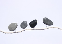 137/365 The Birds (Helen Orozco) Tags: day137365 365the2019edition 97119 madeofstone 119picturesin2019 stones pebbles birds string