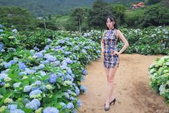 IMG_1665L (攝影玩家-明晏) Tags: outdoor 戶外 美女 辣妹 高家繡球花 繡球花 flower pretty girl woman taiwan taipei 女生 女孩 model 外拍 素人 portrait