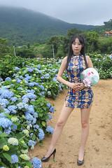 IMG_1659L (攝影玩家-明晏) Tags: outdoor 戶外 美女 辣妹 高家繡球花 繡球花 flower pretty girl woman taiwan taipei 女生 女孩 model 外拍 素人 portrait
