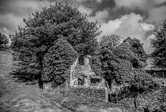 Abandoned Farmhouse (nedjetwave) Tags: devon dereliction abandoned overgrown ivy stonework farmhouse ruralexodus minoltax700 scanfromfilm monochrome blackandwhite worden