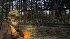 Espectador al valla (Renate Bomm) Tags: asien bart eisen fancyfence fencedfriday herkunft inder indien madurai mann mauer orange renatebomm sonyilce6000 stein turban zaun fence fenced sitzen smile smileonsaturday
