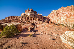 Capital Gorge Rd, Capital Reef National Park (aud.watson) Tags: america northamerica us usa utah waterpocketfold desert canyon canyons mountain mountains capitolgorgerd capitolreefnationalpark