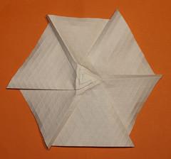 4-Himalayan summit molecule (mganans) Tags: origami tessellation