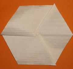 1-Himalayan summit molecule (mganans) Tags: origami tessellation