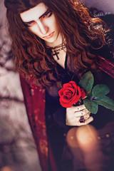 Dark Romance (Pikko_chan) Tags: bjd balljointeddoll bjdphotography balljointeddollphotography beautifulbjd abjd abjdphotography granadobjd granadodoll granado granadolucifer granadovigor vampire vampirebjd stilllifephotography sdbjd 70cmbjd doll canonphotography 50mmphotography gothic rose