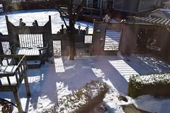 Fancy Fence (ladybugdiscovery) Tags: smileonsaturday fancyfence backyard garden fence shadows snow winter cold
