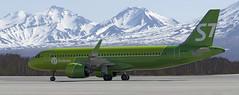 Siberia Airlines Airbus A320neo VQ-BCF (Zhuravlev Nikita) Tags: uhpp spotting elizovo kamchatka pkc airbus a320 320 neo 320neo