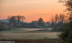 Sunrise , Vestre Raa (2000stargazer) Tags: bergen fanagolfklubb fanagolfcourse vestreraa norway sunrise shadows twilight mist silhouettes trees landscape nature heaven sky canon getty