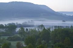 Theta waves on a quiet morning (Aspenlaub (blattboldt)) Tags: morning mist nature early loxia2485sonnar carlzeiss loxia2485 emount sonyilce7rm3 alpha7riii blue green 85mm 51695547 sonnar zeiss sony ilce7rm3 manualfocus manualiris manualexposure specialthankstochristophecasenaveandhisteamfromzeissfortheirpersonalinvolvementinthedevelopmentoftheloxialensline ⚶ berakhah בְּרָכָה manualwhitebalance laudātū topographic landscape europe germany jena kunitz mittleressaaletal nebel früh misty foggy cold