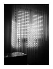 Good Mornin' (Thomas Listl) Tags: thomaslistl blackandwhite biancoenegro noiretblanc monochrome mood window light shade shadow room chamber morning 35mm curtain jalousie