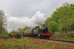 Steaming in the Rain (Treflyn) Tags: steam rain grey wet day dean forest railway mike tyack photo charter great western gwr 4575 class 262t prairie 5541 head north towards whitecroft